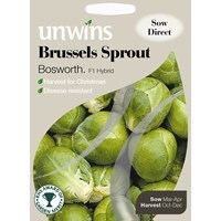 Unwins  Brussels Sprout Bosworth Vegetable Seeds